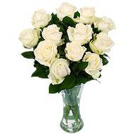 11 белых роз - цветы и букеты на roza.zp.ua