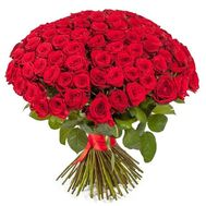 101 red rose - flowers and bouquets on roza.zp.ua