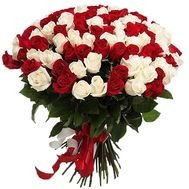 101 red and white imported rose - flowers and bouquets on roza.zp.ua