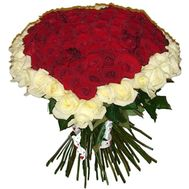 101 roses - flowers and bouquets on roza.zp.ua