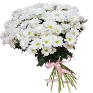 Snow-white daisies in a bouquet - flowers and bouquets on roza.zp.ua