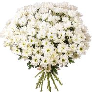 White chamomile chrysanthemum - flowers and bouquets on roza.zp.ua