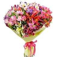 Bouquet of 51 alstromerias - flowers and bouquets on roza.zp.ua