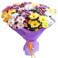 Bouquet of 15 chrysanthemums - flowers and bouquets on roza.zp.ua