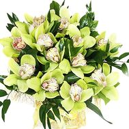 Bouquet of green orchids - flowers and bouquets on roza.zp.ua