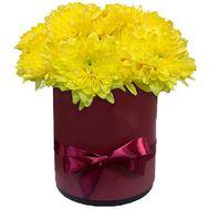 Коробка желтых хризантем - цветы и букеты на roza.zp.ua