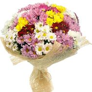 Bouquet of 35 chrysanthemums - flowers and bouquets on roza.zp.ua