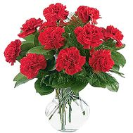Lovely bouquet of carnations - flowers and bouquets on roza.zp.ua