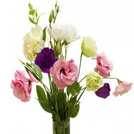 Mini bouquet of natural flowers - flowers and bouquets on roza.zp.ua