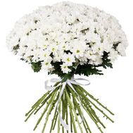 Fashion bouquet of chamomiles - flowers and bouquets on roza.zp.ua