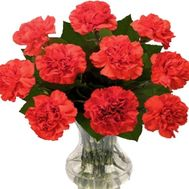A small bouquet of carnations - flowers and bouquets on roza.zp.ua