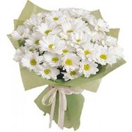 A small bouquet of chamomile chrysanthemums - flowers and bouquets on roza.zp.ua