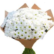 Delicate bouquet of chamomiles - flowers and bouquets on roza.zp.ua