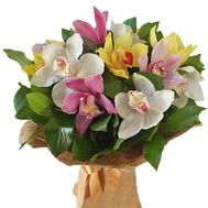 Multicolored orchids - flowers and bouquets on roza.zp.ua