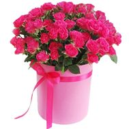pink bush roses in a round box - flowers and bouquets on roza.zp.ua