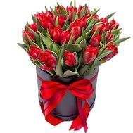 Red tulips in a hat box - flowers and bouquets on roza.zp.ua