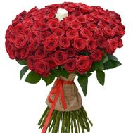 Bouquet of 101 red roses with one white rose - flowers and bouquets on roza.zp.ua