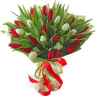 Bouquet of red and white tulips - flowers and bouquets on roza.zp.ua