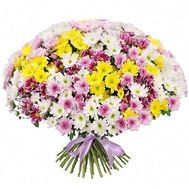 """101 chrysanthemum in the bouquet"" in the online flower shop roza.zp.ua"