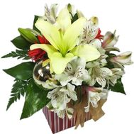 Flowers in a New Year's box - flowers and bouquets on roza.zp.ua