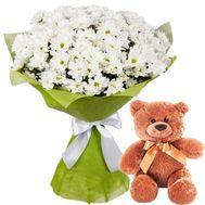 Teddy Bear with a bouquet of chamomile - flowers and bouquets on roza.zp.ua