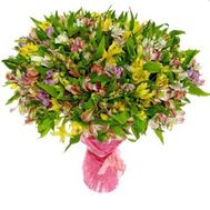 Bouquet of 101 alstroemerias - flowers and bouquets on roza.zp.ua