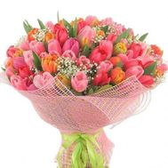 Bouquet of 101 tulips - flowers and bouquets on roza.zp.ua