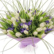 Bouquet of 41 tulips and 18 irises - flowers and bouquets on roza.zp.ua