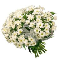 """Bouquet of 19 white chrysanthemums"" in the online flower shop roza.zp.ua"