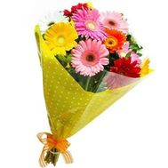 Bouquet of 11 gerberas - flowers and bouquets on roza.zp.ua