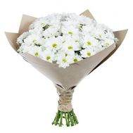 """Bouquet of 11 chamomile chrysanthemums"" in the online flower shop roza.zp.ua"
