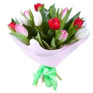 Bouquet of 15 multicolored tulips - flowers and bouquets on roza.zp.ua
