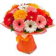 Bouquet of 25 gerberas - flowers and bouquets on roza.zp.ua