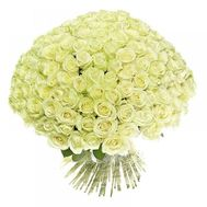 251 white rose - flowers and bouquets on roza.zp.ua