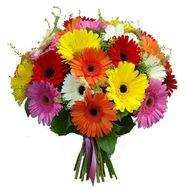 Bouquet of 29 gerberas - flowers and bouquets on roza.zp.ua