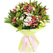 Bouquet of 25 alstromeries - flowers and bouquets on roza.zp.ua