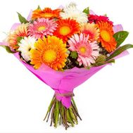 Bouquet of 17 gerberas - flowers and bouquets on roza.zp.ua