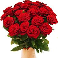Bouquet of 25 red roses flowers - flowers and bouquets on roza.zp.ua