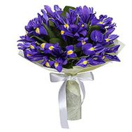 """Bouquet of 15 irises"" in the online flower shop roza.zp.ua"