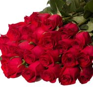 Bouquet of 25 meter red roses - flowers and bouquets on roza.zp.ua