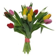 """""""Bouquet of 17 Tulips"""" in the online flower shop roza.zp.ua"""