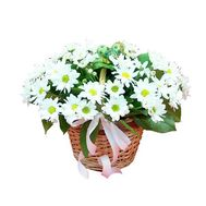 Basket of flowers from 7 chrysanthemums - flowers and bouquets on roza.zp.ua