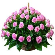 """Basket of flowers from 75 pink roses"" in the online flower shop roza.zp.ua"