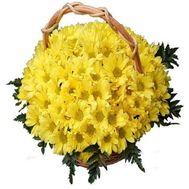 Basket of flowers from 19 chrysanthemums - flowers and bouquets on roza.zp.ua