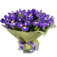 """35 irises"" in the online flower shop roza.zp.ua"