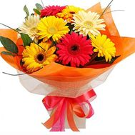 Bouquet of 9 gerberas - flowers and bouquets on roza.zp.ua