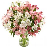 Bouquet of 11 alstromeries - flowers and bouquets on roza.zp.ua