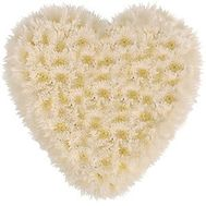 Heart of 25 white chrysanthemums - flowers and bouquets on roza.zp.ua