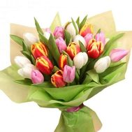 """""""Bouquet of 27 Tulips"""" in the online flower shop roza.zp.ua"""