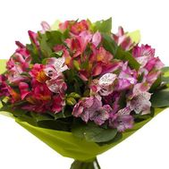 Bouquet of 17 alstromeries - flowers and bouquets on roza.zp.ua